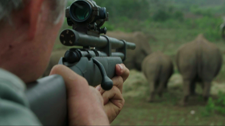 Pneu Dart in Action Rhino Horn Removal